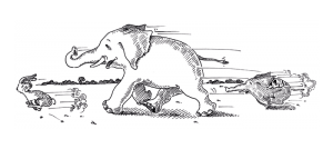 Hase und Elefant